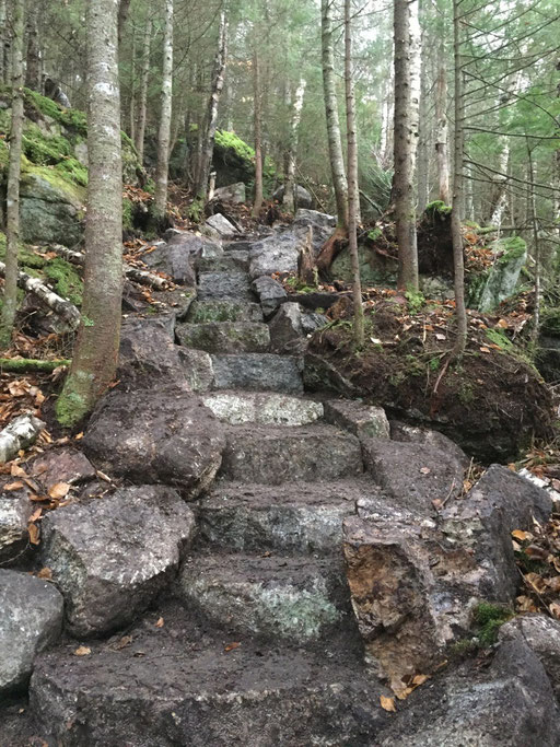 The longest staircase on the trail