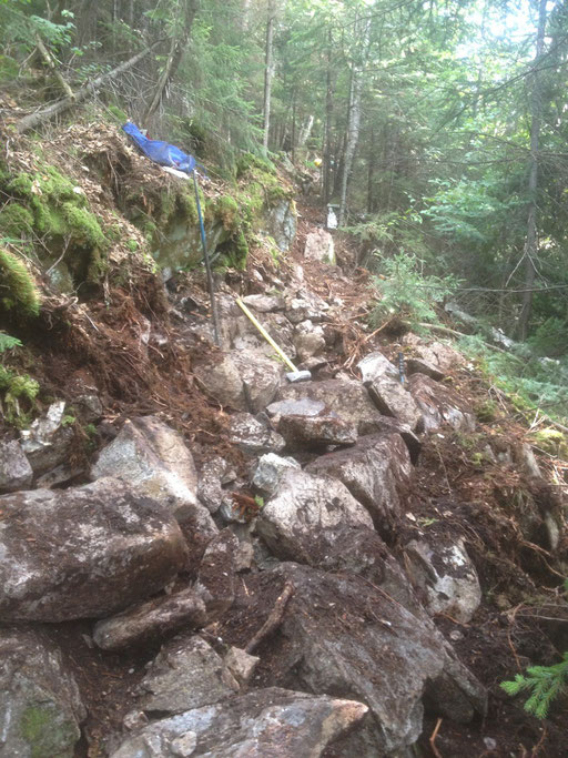 After stumping, the organic material was hand excavated, exposing the steep, unstable rock piles that make up much of the White Mountains