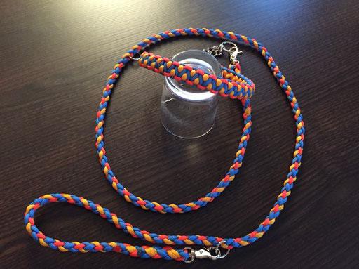 Halsband mit Durchzugkette und passender, verstellbarer Leine: goldenrod, neon-orange, blau