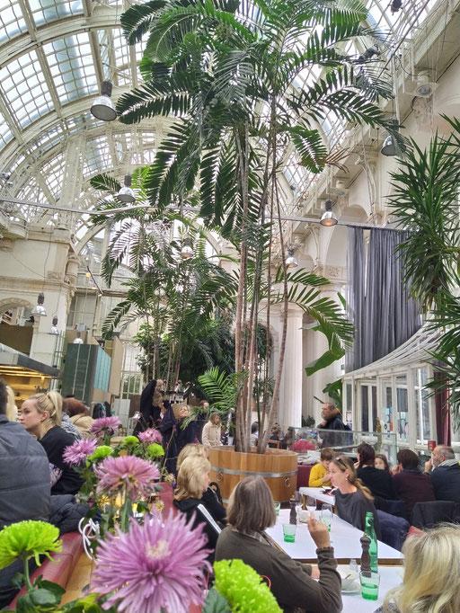 palmenhaus im burggarten