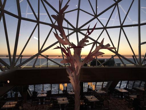 Bild: Mein Schiff 6 - Restaurant Hanami