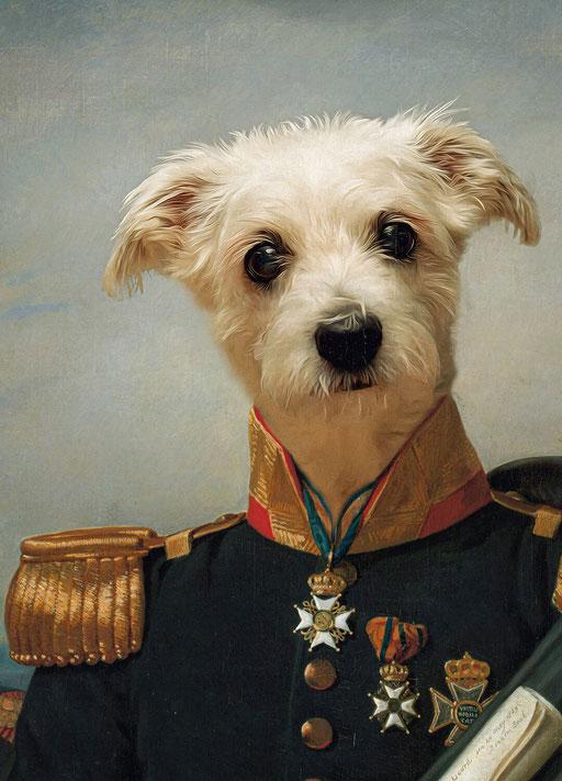 Admiral Fergus