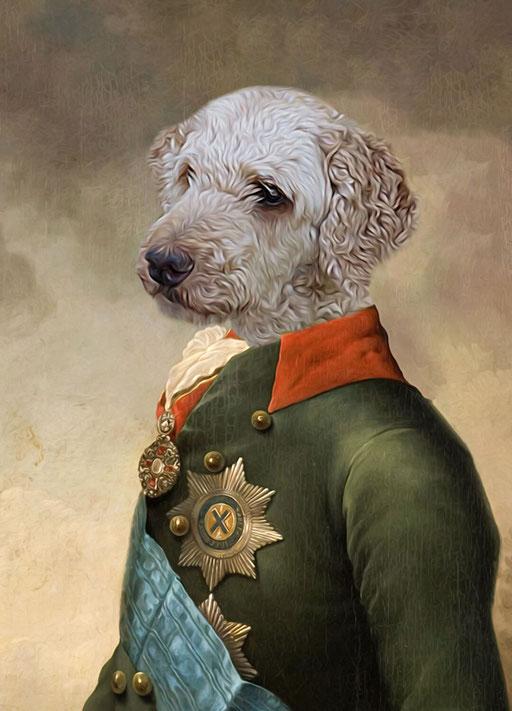 Lord Bailey