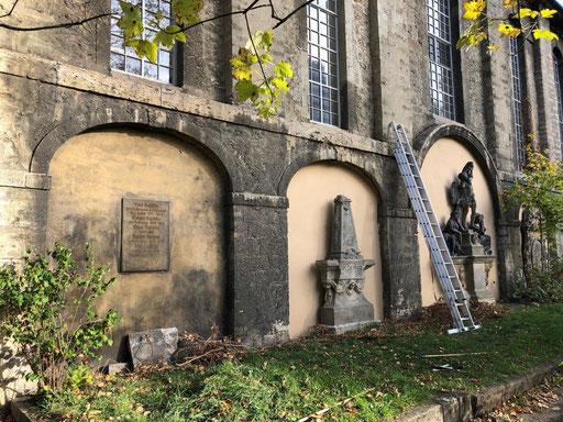 An der Südseite der Kirche wurden alte Efeuranken entfernt und...