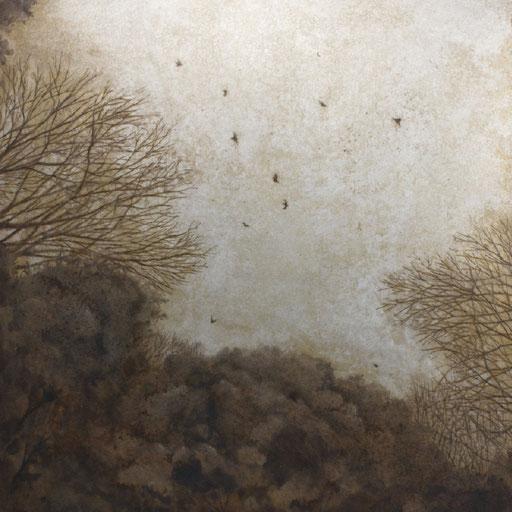 鳥と木々 Birds and trees
