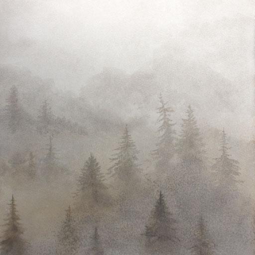 霧の森 Forest in the fog