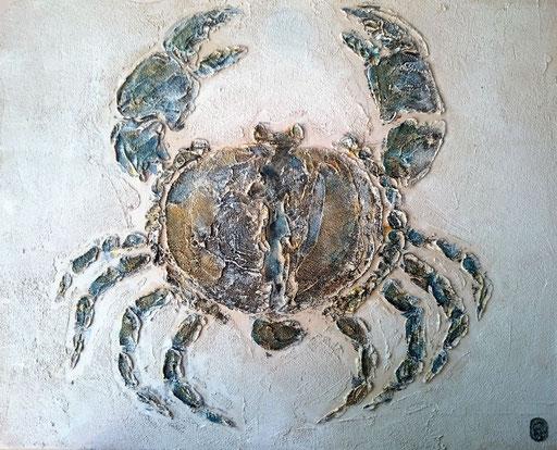 Crabe 2  Enduit acrylique 50X40cm 2019