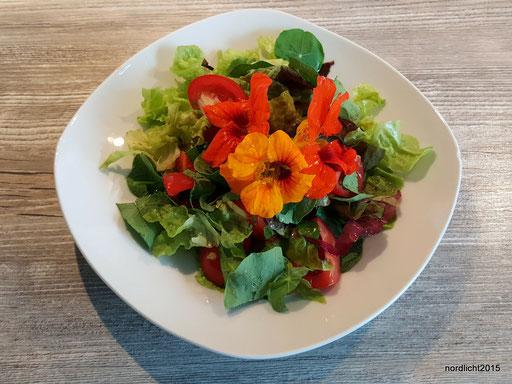 Gemischter Salat mit Kapuziner-Kresse