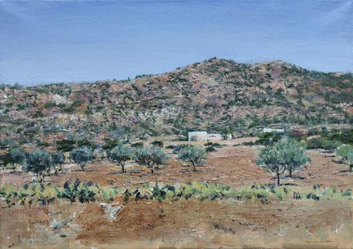 """""""Schroffes Land (Tunesien)"""", 70x50cm, 2008"""