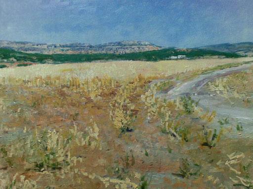 """""""Richtung Wüste (Tunesien)"""", Acryl, 100x70cm, 2011"""