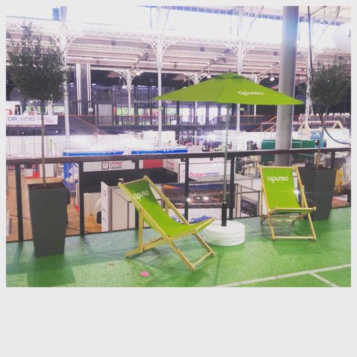 Location de plantes pour vos événements à Paris: Olivier