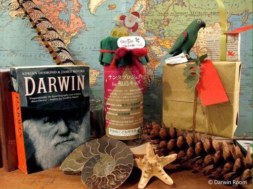 好奇心の森、下北沢の「ダーウィンルーム DARWIN ROOM」は、教養の再生(LIBERAL ARTS LAB)が理念のお店。選りすぐりの古書や、動物剥製の標本、研究生活に便利な道具などを販売。専門家を招いたリベラルアーツ・カフェの開催も。