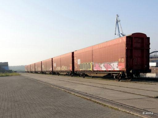neuer Hafen am Elbeseitenkanal