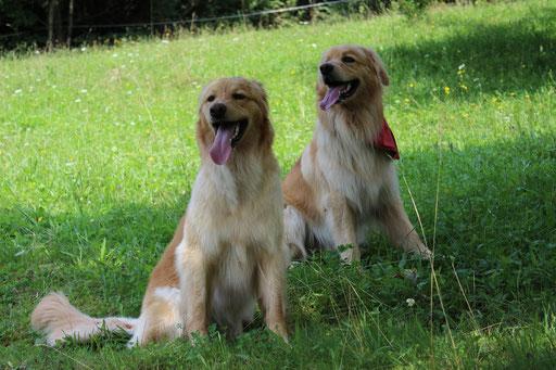 Bellis (links) und Brisco (rechts)