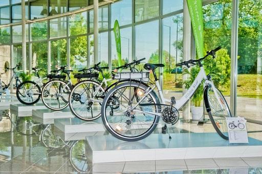 e-Bike Welt