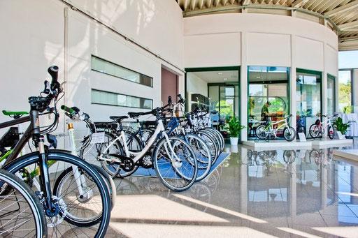 e-Bikes Graz