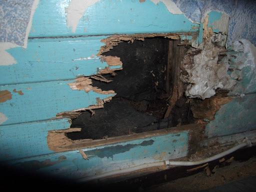 Habitation individuelle ancienne : bas de mur dégradé revêtu de lambris (4)