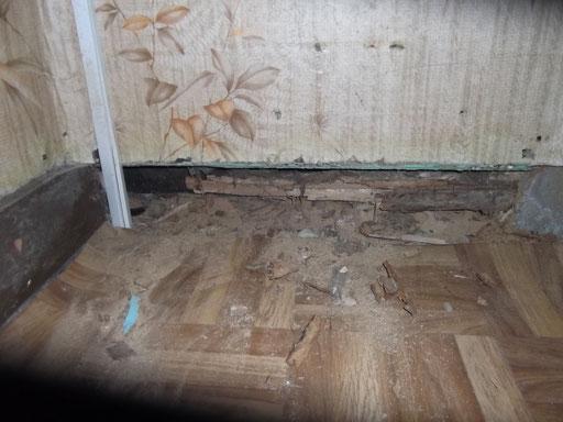 Habitation individuelle ancienne : bas de mur dégradé (1)