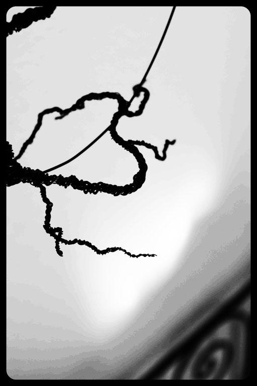 Arbre #2 - Série Arbres - 2015 - 30x30 détail