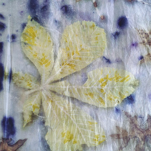Sjaal met Kastanjeblad en Blauwhout