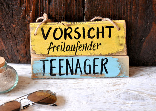 Teenager Nr. 2   ca. 20cm/11cm  Fr. 23.-