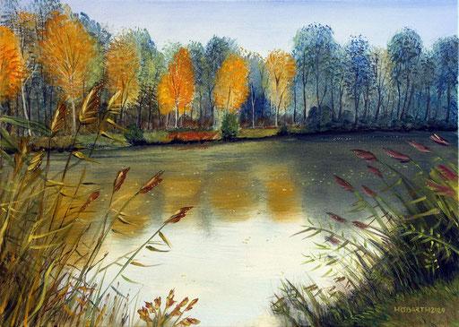 Herbst in der Kickenau 1