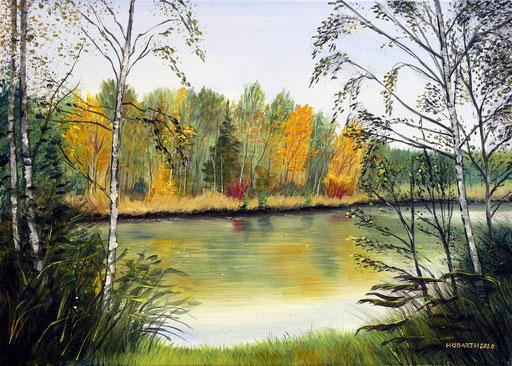 Herbst in der Kickenau 3
