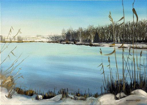 Winter in der Kickenau 2