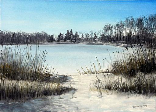Winter in der Kickenau 1