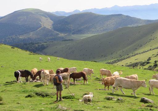 Aoubère - Haute Vallée de l'Adour