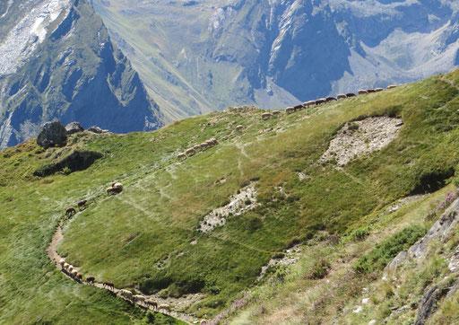 Oscures - Val d'Azun