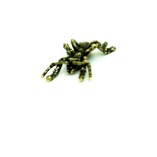 queen ant ¥3,400 触覚がかなり繊細なので、取れないように気を付けてください