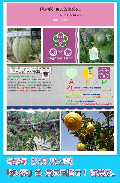 旬感句【夏至】 『和×夢』色 貫き目指せ! 特農家。