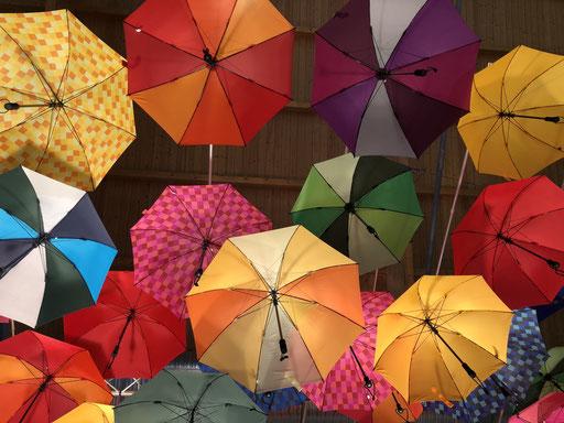 Regenschirm, outdoor, bunt, trekking, wandern