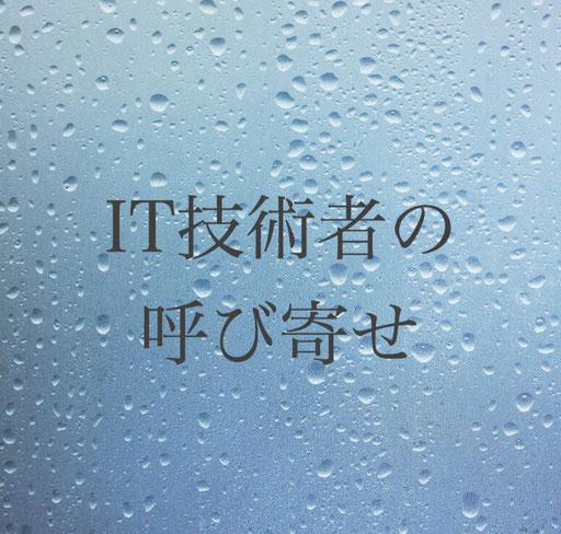 外国人IT技術者の雇用、日本呼び寄せ。在留資格技術ビザ・理系学部卒業・外国人留学生就職ビザ・神奈川県相模原市南区東林間の行政書士髙橋国際法務事務所・ビザカナ相模原にご相談ください。在留資格ビザ専門行政書士にお任せください。申請書類作成・入国管理局申請を代行