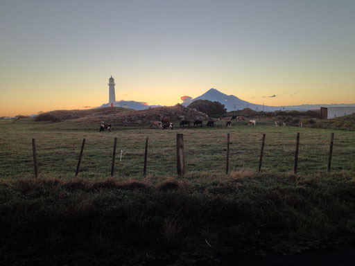 Mt. Taranaki & Cape Egmont Lighthouse