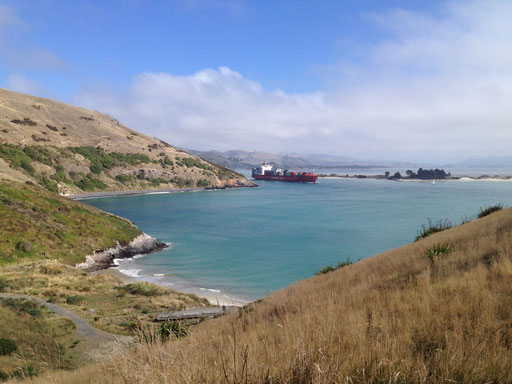 Harrington Point
