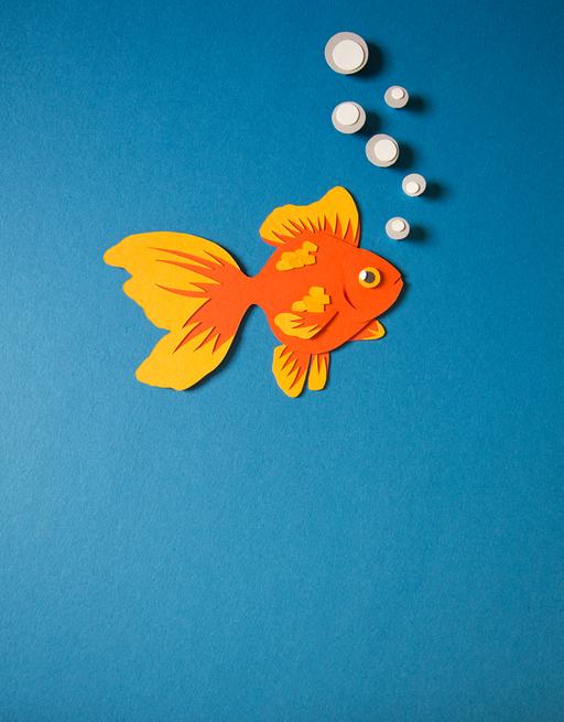 "Masterprojekt Buchillustration zum Thema ""Aquarium"""