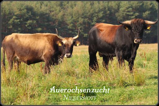 Über Biohof Niederhoff