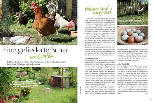 My GREEN Home, Hühner, Hühnerhaltung