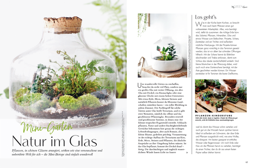 My GREEN Home, Natur im Glas, Fairy Garden