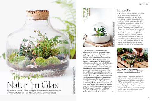 My GREEN Home, Natur im Glas, Fairy Garden