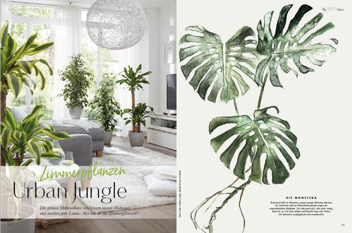 My GREEN Home, Urban Junglem Nachhaltige Grünpflanzen, Luftverbesserer