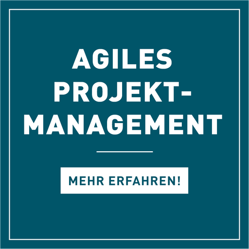Projektmanagement, Agiles Projektmanagement, Schulung, Seminar, Coaching, Hamburg, Berlin, Projektmanagement-Methoden, Stakeholdermanagement, Risikomanagement, Scrum