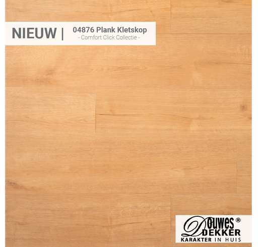 04876 Plank Kletskop