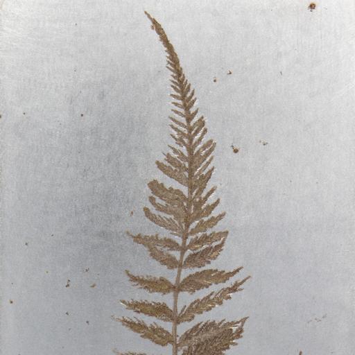 葉 Leaf