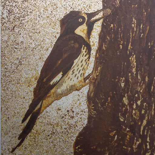キツツキ Woodpecker