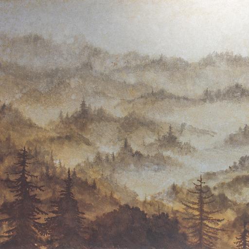 朝霧 Morning mist