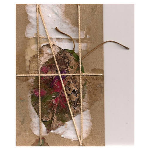 Trapped butterfly series. Nº 2 | Collage on cardboard