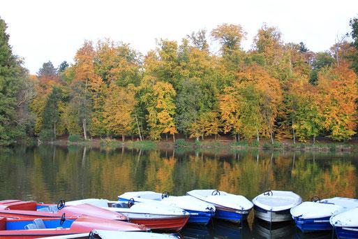 Ruhige Herbststimmung am Steinbrücker Teich